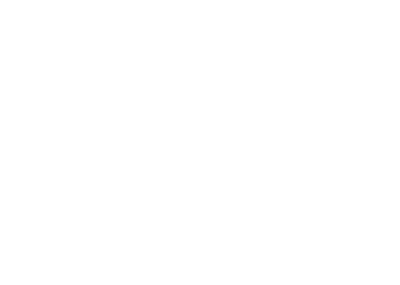 live your standards logo